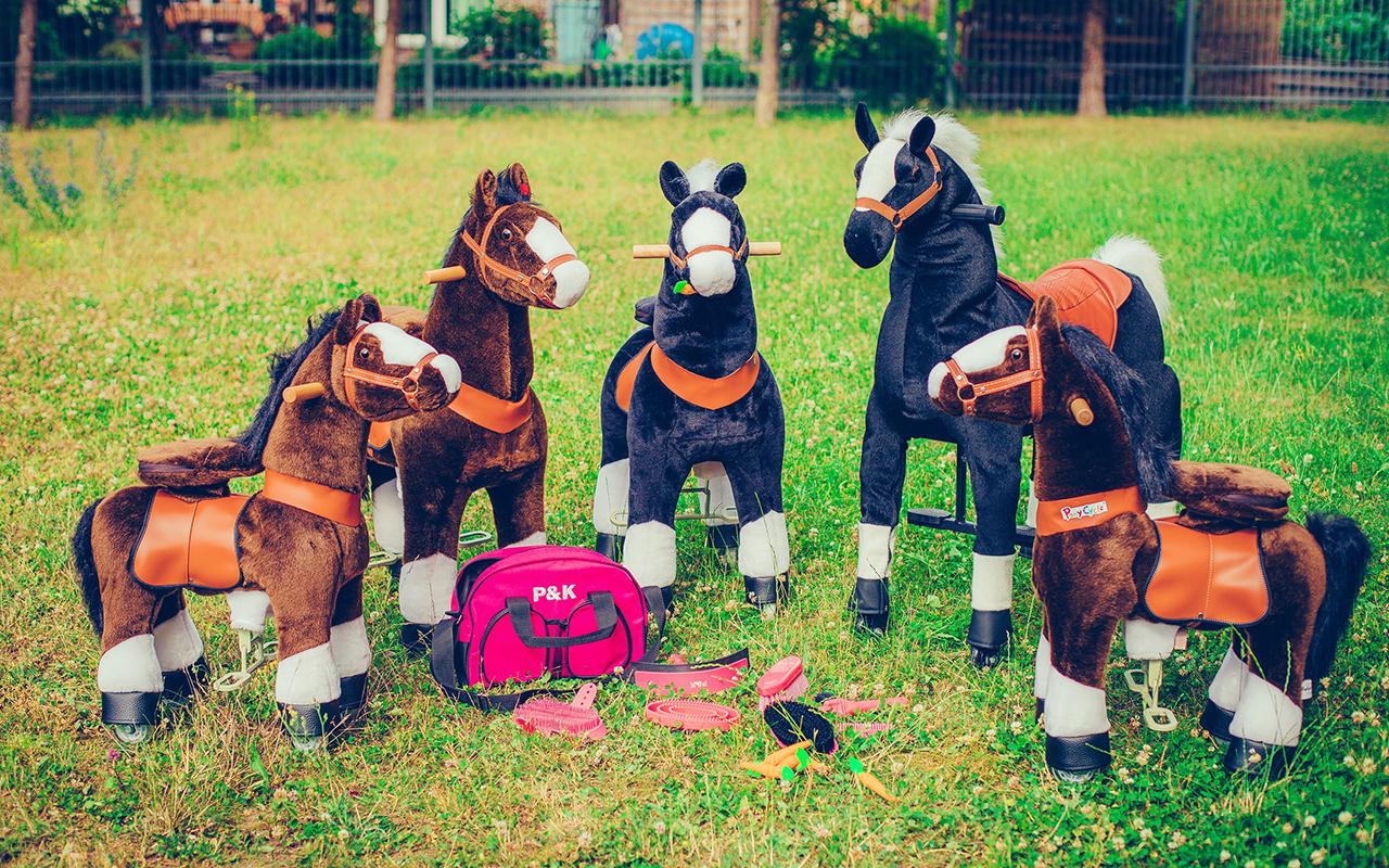Pferdeparty